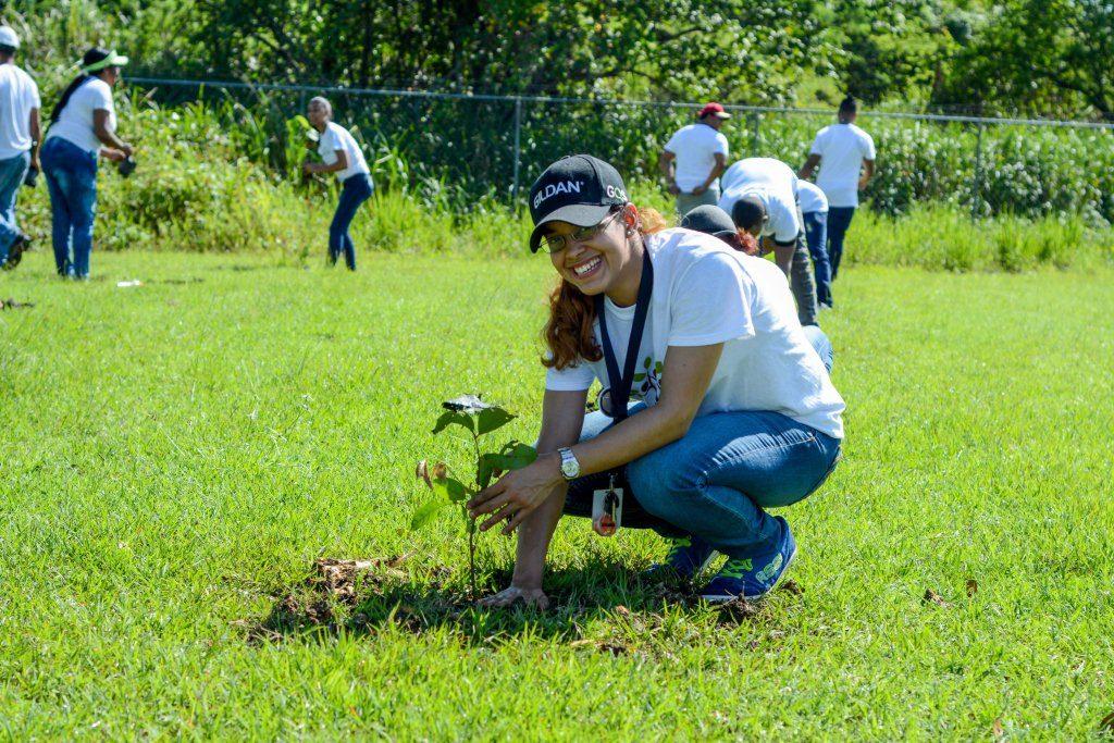 Durante el año fueron realizadas tres jornadas de reforestación en San Pedro de Macorís y San Antonio de Guerra